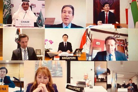 Lammens participó de la Reunión Extraordinaria de Ministros de Turismo del G-20